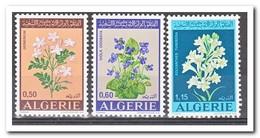 Algerije 1972, Postfris MNH, Flowers - Algerije (1962-...)