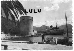 DEPT 20-2B : édit. Yvon N° 252 : Calvi Le Port Et L île De Beauté ( Pécheur Filet ) - Calvi