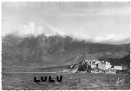DEPT 20-2B : édit. Yvon N° 249 : Calvi La Citadelle Et Chaîne Du Mont Grosso - Calvi