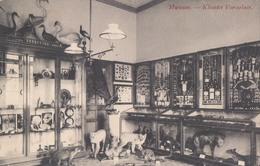 Vorselaar Museum Klooster Vorsselaer - Vorselaar