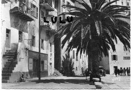DEPT 20-2B : édit. Yvon N° 253 : Calvi Vieilles Maisons Sur Le Quai - Calvi