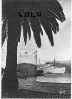 DEPT 20-2B : édit. Yvon N° 255 : Calvi L Île De Beauté Au Port - Calvi