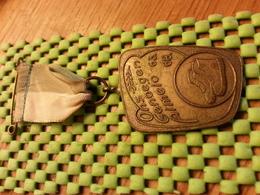 Medaille  / Medal -  Ons Genoegen Almelo 1963-1968  / Walking    - The Netherlands - Other