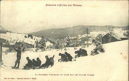 La Jeunesse Vosgienne En Luge Sur Les Hautes Vosges - France