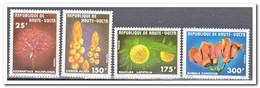 Opper-Volta 1977, Postfris MNH, Plants - Opper-Volta (1958-1984)