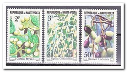 Opper-Volta 1977, Postfris MNH, Wild Fruit - Opper-Volta (1958-1984)
