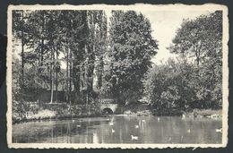+++ CPA - HOESELT - Institut St Joseph - Le Parc - Pièce D'eau Et Pont - Nels   // - Hoeselt