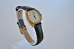 Watches : HOGA LADIES 17JEWELS INCABLOC HAND WIND - 1960-70's  - Original - Swiss Made - Running - Excelent Condition - Montres Modernes