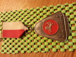 Medaille  / Medal -  Enschede.- E.W.B , Ronde Van Twente  / Walking    - The Netherlands - Other