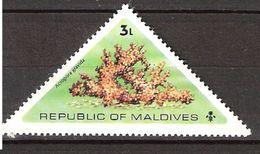 Maldives 1975 Corals, Sea Urchins And Starfish, Acropora Gravida,  Mi 579, MNH(**) - Maldives (1965-...)