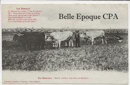 45 - En Beauce - Boeufs Attelés à Une Charrue Brabant +++++ Louis Joly, Pithiviers / Cliché Schmitt +++++ 1919 - Frankrijk