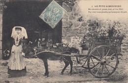 Lo Pito Limouzino - France