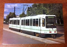 44 NANTES TRAMWAY TRAIN 1984 CARTE POSTALE - Nantes