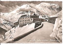 PASSO DELLO STELVIO M. 2760 - NEVICATA ESTIVA - Bolzano (Bozen)