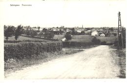 Momignies - CPA - Seloignes - Panorama - Momignies