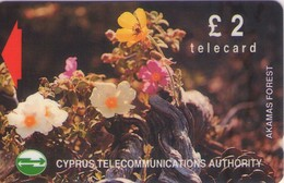 TARJETA TELEFONICA DE CHIPRE. 17CYPA (141). - Chipre