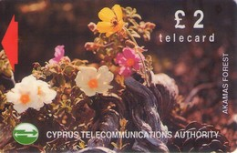 TARJETA TELEFONICA DE CHIPRE. 18CYPA (142). - Chipre