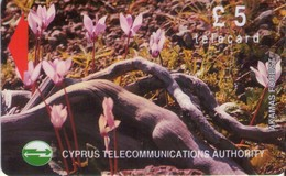 TARJETA TELEFONICA DE CHIPRE. 16CYPB (145). - Chipre