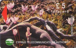 TARJETA TELEFONICA DE CHIPRE. 17CYPB (146). - Chipre