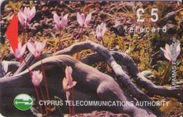 TARJETA TELEFONICA DE CHIPRE. 18CYPB (147). - Chipre