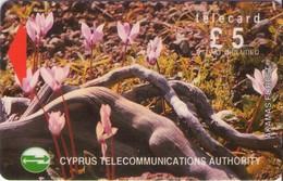 TARJETA TELEFONICA DE CHIPRE. 21CYPA (148). - Chipre