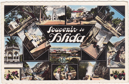 Algérie / Souvenir De Blida - Multi-vues - 1960 - Blida