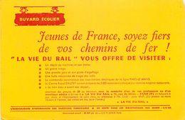 VP-GF.18-20 Jmt: BUVARD.  LA VIE DU RAIL. REVUE DES CHEMINS DE FER. - Transport