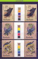 Mza061 FAUNA VOGELS DUIF DUIVEN DOVES PIGEONS BLACKBIRD * GUTTERPAIRS * BIRDS VÖGEL AVES OISEAUX BARBADOS 1982 PF/MNH - Colecciones & Series