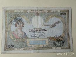 Occupazione Italiana Montenegro 1000 Dinari 1931 - [ 6] Colonies