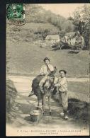 BAGNERES-de-BIGORRE- Laitière Et Son ânesse - Ferme De Riennel -   Recto Verso - Paypal Sans Frais - Bagneres De Bigorre