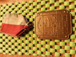 Medaille  / Medal - Jeugd Raad De Berghlopers - S Heerenberg  / Walking  / Marche Pour L'Association   - The Netherlands - Netherland