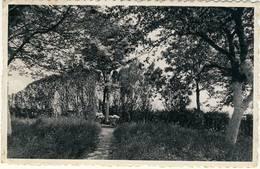 Mons Couvent De L'Asosomption Chaussée Du Roeulx - Mons