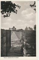 """AK Weeze, """"Ehrenfriedhof"""" 1955 - Deutschland"""