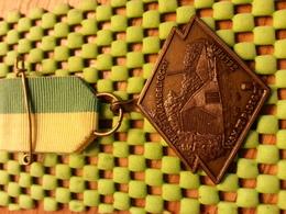 """Medaille  / Medal - Hefst.w.tocht , W.S.V De Ploeg Zelhem """"65 / Walking  / Marche Pour L'Association   - The Netherlands - Netherland"""