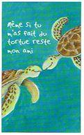 HUMOUR TORTUES MEME SI TU M AS FAIT  DU TORTUE RESTE MON AMI   ****   A   SAISIR **** - Schildpadden
