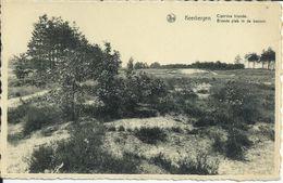594. Blonde Plek In De Bossen - Keerbergen