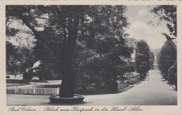 Allemagne - Bad Eilsen - Kurpark In Die Harrl-Allee - Schaumburg