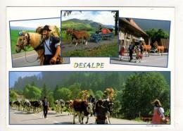 CP 10*15-AQ1486-DESALPE DES TROUPEAUX MULTIVUES - FR Fribourg