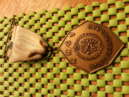 Medaille  / Medal - K.N.G.V Bondwandeldag / Walking  / Marche Pour L'Association   - The Netherlands - Netherland