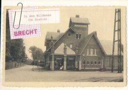 Brecht In Den Wildeman (De Statie) - Brecht