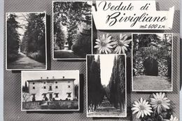 Vedute Di Bivigliano - Firenze - H3933 - Firenze (Florence)