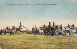 Threashing The Bountiful Wheat Crop In The Canadian North West - Cultivation