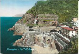 Italy > Liguria - Riomaggiore - Rue De L'Amour.- Via Dell' Amore, Railway Station,Train - Italie
