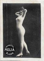 Mélia Cigarettes Photo Nu Féminin Académique Femme Nue Risque érotisme éros - Advertising Items