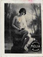 Mélia Cigarettes Photo Nu Féminin Académique Femme Nue Risque érotisme éros - Objets Publicitaires