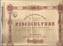 Action De 100 Francs,1908, Société Industrielle D'AUJAC , Charente Inférieure , Pisciculture, 2 Scans, Frais Fr 195 E - Other