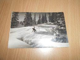 5879 - CPA , AUTRICHE, AUSTRIA ,Waldlichtung, Skieur Dans Une Clairière - Autres