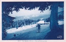 Sports D Hiver - Piste De Skieur En Foret - Ski - Winter Sports