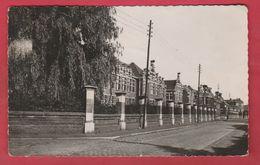 Comines - L'Hôpital - 1955  ( Voir Verso ) - Komen-Waasten