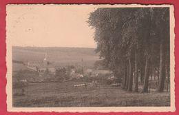 Ossogne - Panorama ... Du Village - 1952 ( Voir Verso ) - Havelange